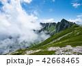 夏山 木曽駒ヶ岳 夏の写真 42668465