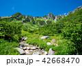 夏山 木曽駒ヶ岳 夏の写真 42668470
