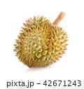 ドリアン くだもの フルーツの写真 42671243