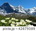 メンリッヘンからクライネシャイデックへのハイキングコースからの眺め 42679389