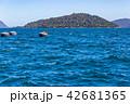 休憩するオタリア 42681365