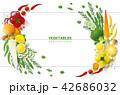 ベジタブル 野菜 爽やかなのイラスト 42686032