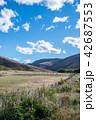 ニュージーランドの風景 42687553