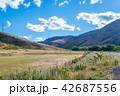 ニュージーランドの風景 42687556