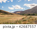 ニュージーランドの風景 42687557