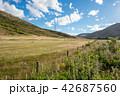 ニュージーランドの風景 42687560