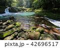 菊池渓谷 渓流 川の写真 42696517
