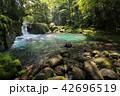 菊池渓谷 渓流 川の写真 42696519