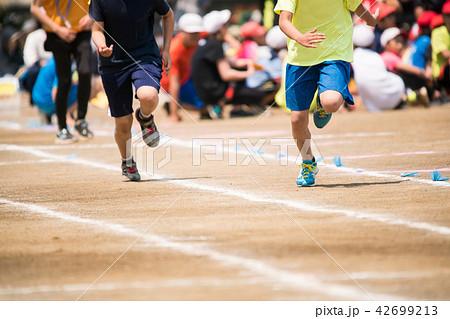 徒競走 運動会イメージ 42699213