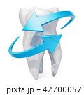 歯 保護 守るのイラスト 42700057