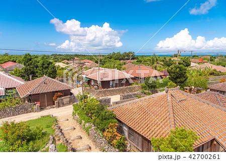 沖縄 竹富島の集落 なごみの塔から 42700261