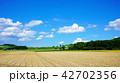 夏の畑作風景 16:9 42702356