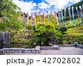 (静岡県)熱海姫の沢公園の春 42702802