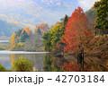 湖 紅葉 八千代湖の写真 42703184