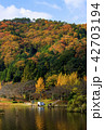 湖 紅葉 八千代湖の写真 42703194