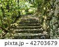 永源寺 初夏 新緑の写真 42703679