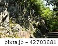 永源寺 初夏 新緑の写真 42703681