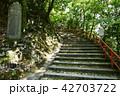 永源寺 初夏 新緑の写真 42703722
