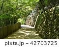 永源寺 初夏 新緑の写真 42703725