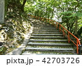 永源寺 初夏 新緑の写真 42703726