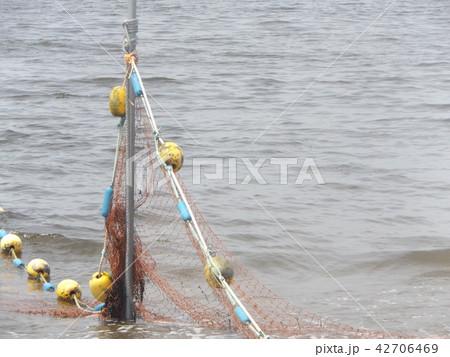 黄色い海水浴場表示ブイ 42706469