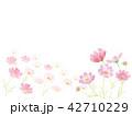 コスモス畑 水彩イラスト 42710229