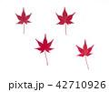 紅葉の落ち葉 42710926