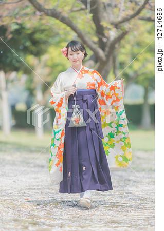 Sakura 42714636