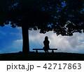 木陰のベンチに寂しげな少女 42717863