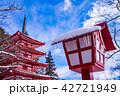 忠霊塔 浅間神社 冬の写真 42721949