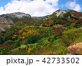 山 風景 自然の写真 42733502