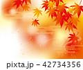 紅葉 モミジ 秋のイラスト 42734356