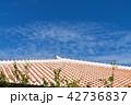 沖縄の赤瓦と空 42736837