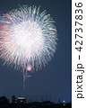 岡崎城下家康公夏まつり花火大会 42737836