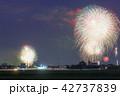 岡崎城下家康公夏まつり花火大会 42737839