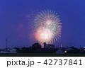 岡崎城下家康公夏まつり花火大会 42737841