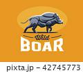 ワイルド 野生 野生動物のイラスト 42745773