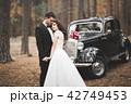 ウェディング ウエディング 結婚の写真 42749453