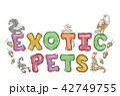 Exotic Pets Lettering Illustration 42749755