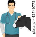 獣医 ウシ 牛のイラスト 42749773