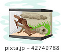 ヘビ 蛇 ベクタのイラスト 42749788