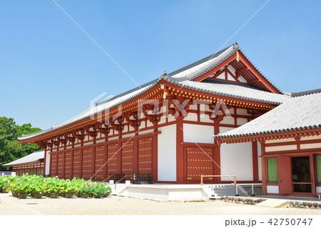 奈良・薬師寺 42750747
