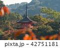 寺 秋 紅葉の写真 42751181