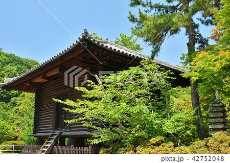 奈良・唐招提寺 42752048