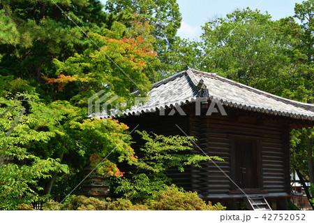 奈良・唐招提寺 42752052