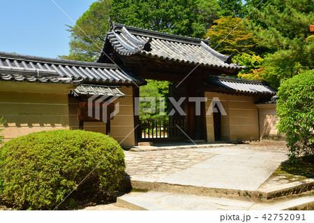 奈良・唐招提寺 42752091