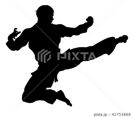 Karate or Kung Fu Flying Kick Silhouette 42753668