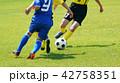 サッカー フットボール 42758351