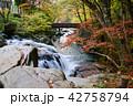 山鶏滝・やまどりたき(福島県・平田村) 42758794