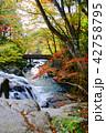 山鶏滝・やまどりたき(福島県・平田村) 42758795